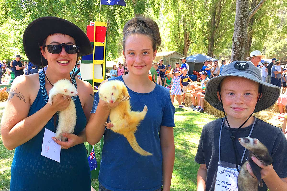 henley-on-mersey-ferret-races-latrobe-council-australia-day6
